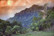 Nature Art Prints - Na Pali Coast Print by Dave Fleetham - Printscapes