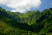 Green Forest Prints - Na Pali Green Print by Mike  Dawson