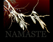 Abstract Nature Art Posters - Namaste I Poster by Ann Powell