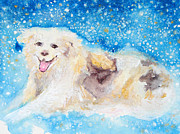 Husky Dog Paintings - Nanny Bliss by Ashleigh Dyan Bayer