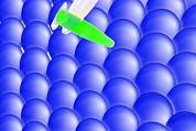 Nano-science, Conceptual Image Print by Gombert, Sigrid