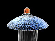 Pinhead Prints - Nanorobot On Pin Print by Christian Darkin