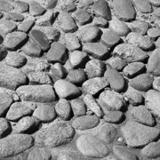 Cobblestones Photos - Nantucket Cobblestones by Charles Harden