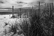 Harbors Framed Prints - Nantucket Harbor Beach Dunes  Framed Print by Thomas Schoeller