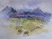 Grape Vines Originals - Napa Valley ll by Carolyn Zbavitel