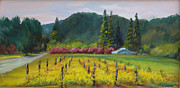 Calistoga Painting Posters - Napa Valley Mustards on Silverado Trail Poster by Deirdre Shibano