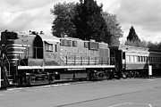 Winery Photography Prints - Napa Valley Railroad Wine Train Locomotive in Napa California Wine Country . Black and White . 7D899 Print by Wingsdomain Art and Photography