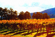 Winery Digital Art Posters - Napa Valley Vineyard in Autumn Colors 2 Poster by Wingsdomain Art and Photography