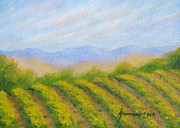 Napa Valley Vineyard Print by Jerome Stumphauzer