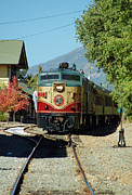 Napa Valley Wine Train Posters - Napa Valley Wine Train No. 72 Poster by Suzanne Gaff