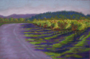Wine Vineyard Pastels Posters - Napa Vineyard Poster by Becky Chappell