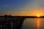 Paradise Pier Attraction Prints - Naples Pier Sunrise Print by Sean Allen