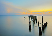 Gulf Of Mexico Scenes Framed Prints - NaplesBeachPilings1 Framed Print by Gordon Campbell