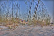Beach Scenes Photo Originals - NaplesBeachsailboat by Gordon Campbell