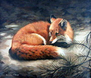 Naptime In The Pine Barrens Print by Sandra Chase