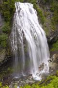 Pierce County Posters - Narada Falls, Mount Rainier National Poster by Craig Tuttle