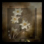Marsha Tudor - Narcissus Containment