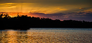 Sundown Prints - Narrabeen Sunset with lenticular rays Print by John Buxton