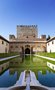 Garden Scene Posters - Nasrid Palace from fish pond Poster by Jane Rix