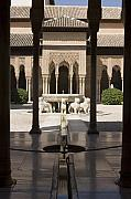 Leones Framed Prints - Nasrid Palaces Alhambra Granada Spain Europe Framed Print by Mal Bray