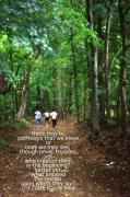 Natchez Trace Parkway Posters - Natchez Trace Walkers with Poem Poster by Randy Muir