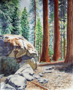 National Park Painting Posters - National Park Sequoia Poster by Irina Sztukowski