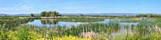 National Wildlife Preserve Marshes In Klamath Falls Oregon. Print by Gino Rigucci