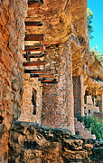 Colorado Mountains Posters - Native American Cliff Dwellings Poster by Jill Battaglia