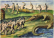 Timucua Framed Prints - Native Americans: Crocodiles, 1591 Framed Print by Granger