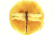 Native American Paintings - Native Dragonfly by Gladys Folkers