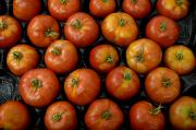 Salad Prints - Native Tomatoes At An Outdoor Market Print by Todd Gipstein
