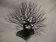 Winter Sculptures - Natural Wire Tree Sculpture by Mark Golomb