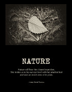 Nature Print by Bonnie Bruno