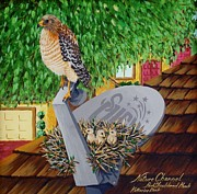 Nature Channel- Red Shouldered Hawk Print by Katherine Young-Beck