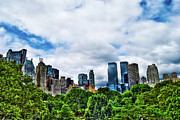Central Park Photos - Nature in Metropolis by Randy Aveille