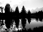White River Scene Photo Originals - Nature Mirrored.  by Jessica Duede