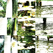 Photo Collage Prints - Nature Scape 006 Print by Robert Glover