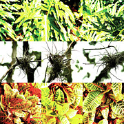 Photo Collage Prints - Nature Scape 007 Print by Robert Glover