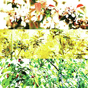 Photo Collage Prints - Nature Scape 010 Print by Robert Glover
