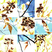 Photo Grids Art - Nature Scape 021 by Robert Glover