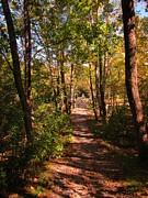 John Malone - Nature Trail