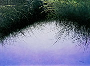Grasses Framed Prints - Natures Eyelashes Framed Print by Cindy Lee Longhini