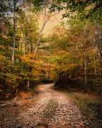 Autumn Landscape Prints - Natures Harmony Print by Jai Johnson