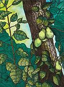 Fruit Trees Drawings - Natures Provision by Willie McNeal