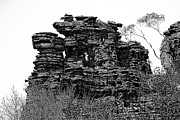 Finger Prints - Natures Ruins Print by Douglas Barnard