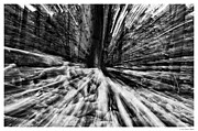 Warp Photo Framed Prints - Natures Warp Framed Print by Scott  Wyatt