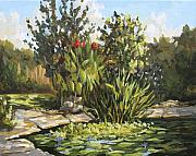Jose Rodriguez - Natures Water Garden