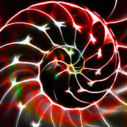Nautilus Digital Art - Nautilus Shell Ying and Yang - Electric - v1 - Red by Wingsdomain Art and Photography