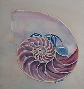 Stones Painting Originals - Nautilus With Glass Stones by Jenny Armitage