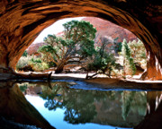 Juniper Tree Framed Prints - Navajo Arch Reflection Framed Print by Ed  Riche